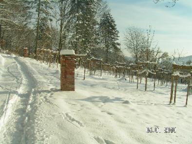 Ahornpark im Winter 1969 und 2010