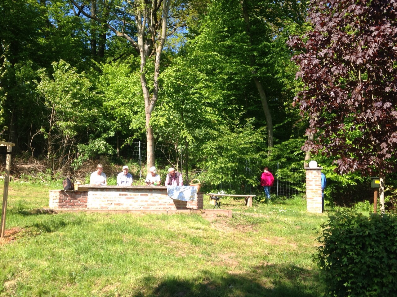 Curie-Park/ Ahornpark