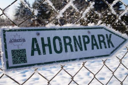 Winter im Ahornpark