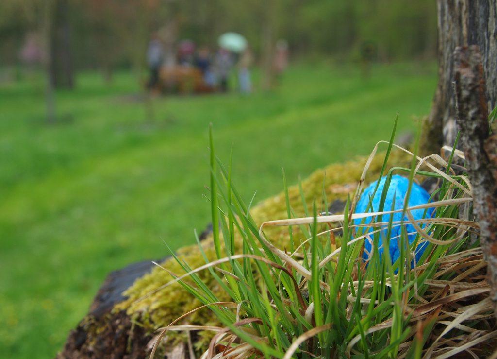 Der Osterhase wurde gesichtet – im Ahornpark !