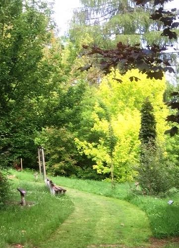 Heinzelmännchen im Ahornpark – bitte meldet Euch