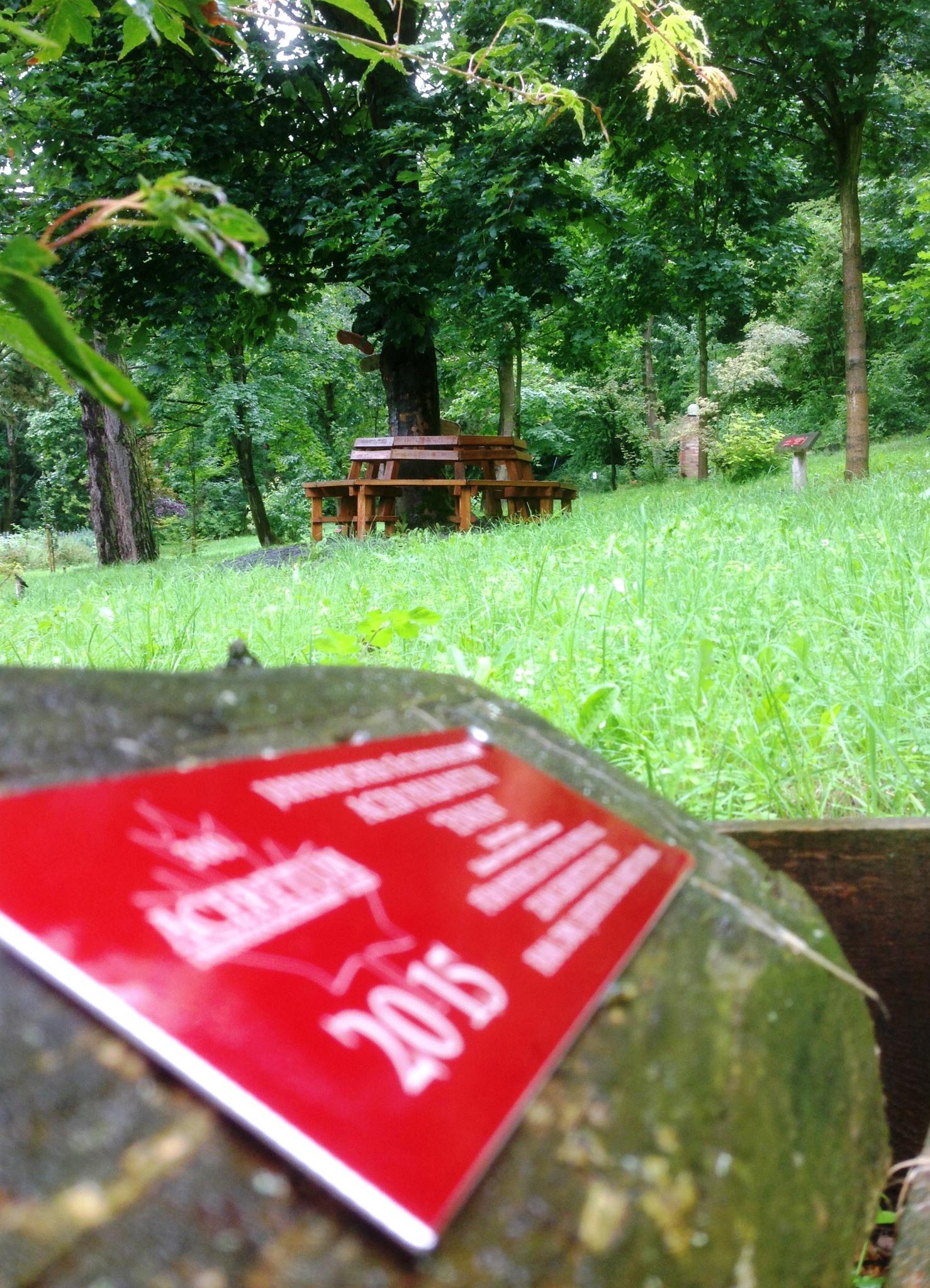 … auch im Regen ist es im Ahornpark schön …