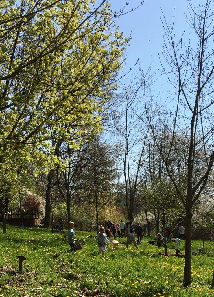 Solch'  ein Gewusel und Gehopse, Gekicher und Gerenne im Ahornpark bei der Ostereiersuche