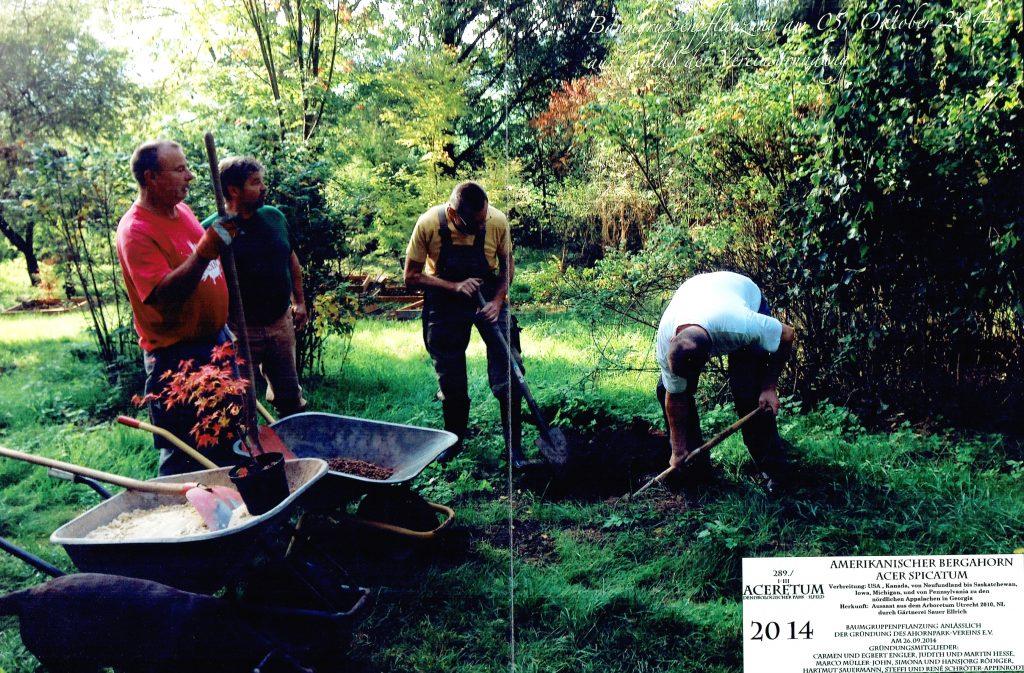 Wir feiern mit einem  Arbeitseinsatz ein Jubiläum – 5 Jahre Ahornparkverein Ilfeld